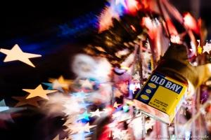 12.19_baltimore_34th_lights_2014_Dec18_3337
