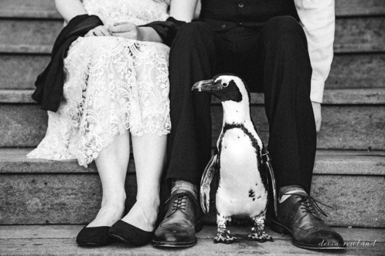 07.26_Devon-Rowland-ch-wedding-2017-0701-1586.jpg